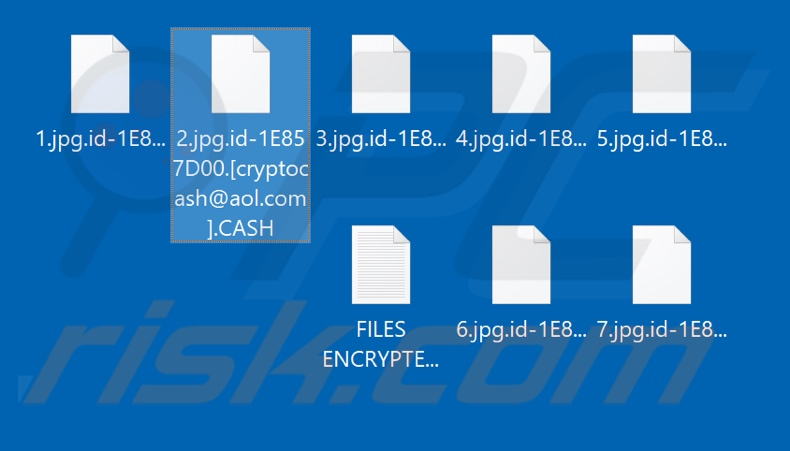 Files encrypted by CASH