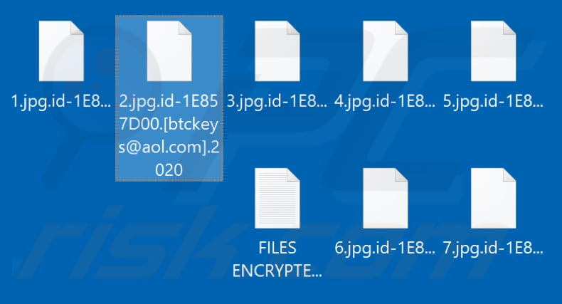 Files encrypted by .2020 ransomware (.2020 extension)